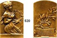 M E D A I L L E N,Medailleur Heinrich Kautsch (1859 - 1943) 1913.  Bronzeplakette, oben abgerundet.  Preismedaille Grenoble.  35 x 55 mm.  45 g.