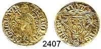 AUSLÄNDISCHE MÜNZEN,Niederlande Geldern, ProvinzKarl von Egmond 1492 - 1538.  Goldgulden o.J.  3,21 g.  Delmonte 618.  Fb. 67.  GOLD