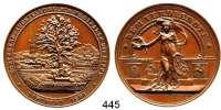 M E D A I L L E N,Landwirtschaft Dortmund,  Bronzemedaille 1894 (W. Mayer, Stuttgart).  Gartenbau-Ausstellung für Westfalen und Lippe.  Dem Verdienste.  42,7 mm.  33,58 g.
