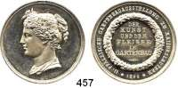 M E D A I L L E N,Landwirtschaft Kaiserslautern,  Silbermedaille 1896.  II. Pfälzische Gartenbauausstellung.  Der Kunst und dem Fleisse im Gartenbau.  35,3 mm.  18,98 g.