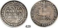 Deutsche Münzen und Medaillen,Stolberg Christoph Friedrich und Jost Christian 1704 - 1738 24 Mariengroschen 1724 I.I.G., Stolberg.  13,11 g.  Dav. 1000.