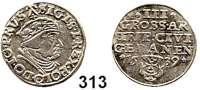 Deutsche Münzen und Medaillen,Danzig, Stadt Sigismund I. 1506 - 1548 3 Groschen 1539.  2,42 g.  Dutkowski/Suchanek 71 IIIa.