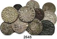 AUSLÄNDISCHE MÜNZEN,Polen LOTS   LOTS   LOTS Denar o.J.; Schilling 1619, 1626, 1663; Schilling (Riga) 1621; 3 Pölker 1620, 1624(2); Groschen 1607, 1608 und 3 Gröscher 1585(gelocht).  LOT 12 Stück.