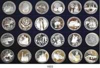 AUSLÄNDISCHE MÜNZEN,Russland Russische Föderation seit 1991 LOT von 24 verschiedenen Gedenksilbermünzen.  3 Rubel 1988(2), 1989(2), 1990(4), 1991(4), 1992(2), 1993(9) und 1994.