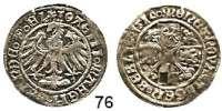 Deutsche Münzen und Medaillen,Brandenburg - Preußen Joachim I. 1499 - 1535 Groschen 1517, Berlin.  2,04 g.  Bahrfeldt 200 f.
