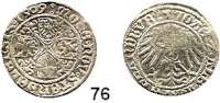 Deutsche Münzen und Medaillen,Brandenburg - Preußen Joachim I. gemeinsam mit Albrecht 1499 - 1513 Groschen 1509, Stendal.  2,09 g.  Bahrfeldt 204 e.