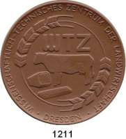 MEDAILLEN AUS PORZELLAN,Staatliche Porzellan-Manufaktur MEISSEN Dresden 1989 braun (80 mm).  Argrawissenschaftliche Gesellschaft der DDR. Kronentor des Zwingers.